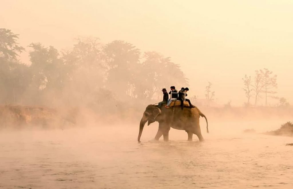 Elephant Ride in Chitwan National Park: Honeymoon Tour in Nepal